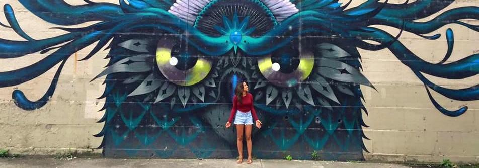 Owl Photo Banner Street Art
