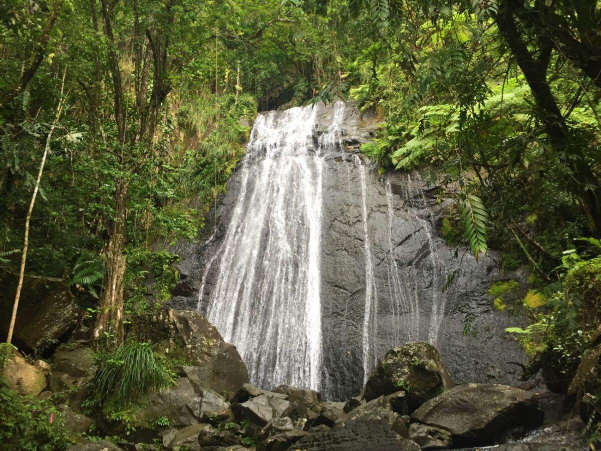 El Yunque Waterfall Puerto Rico   Packs Light