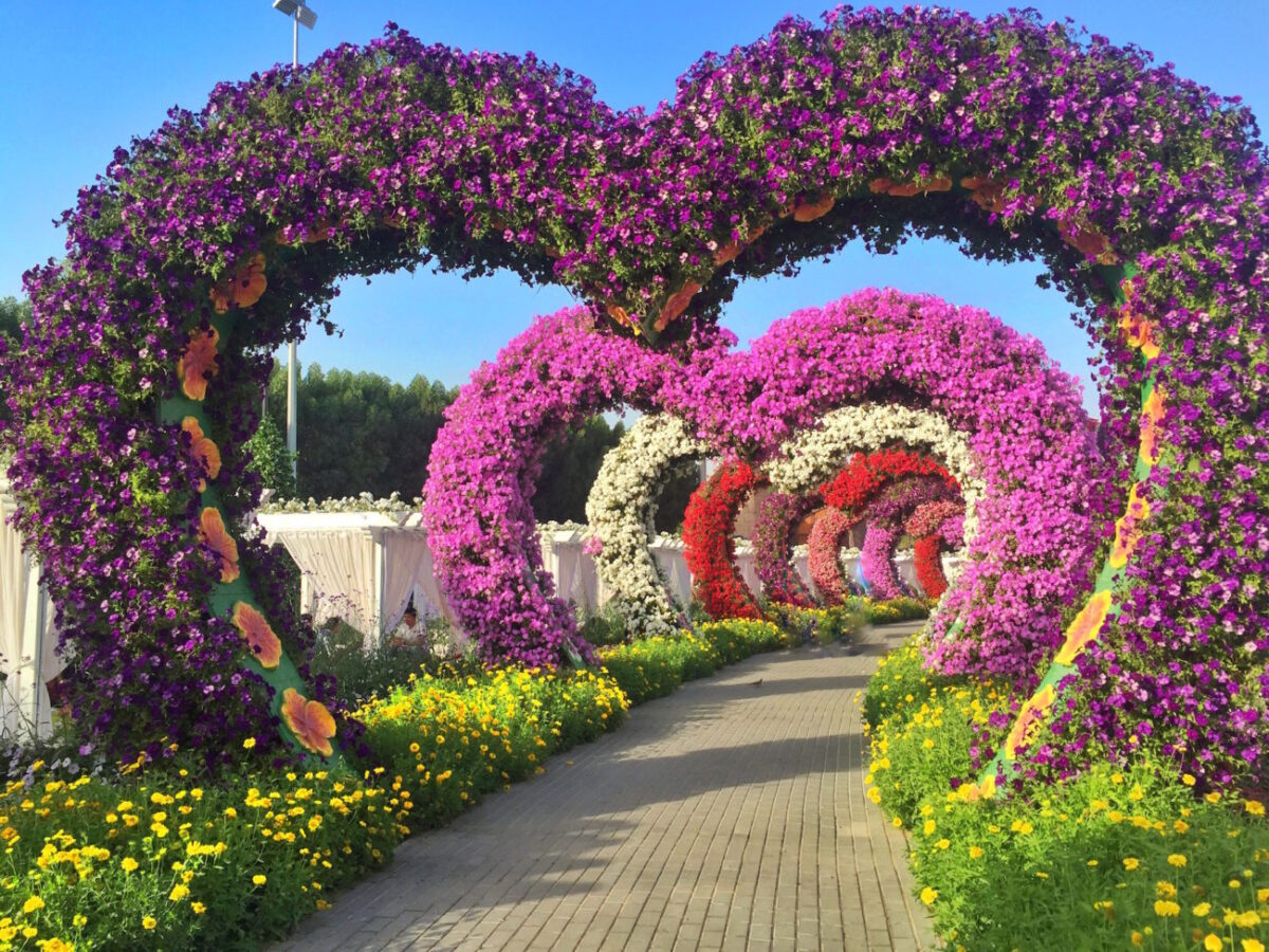why dubai miracle gardens is an instagram addicts paradise - Miracle Garden Dubai