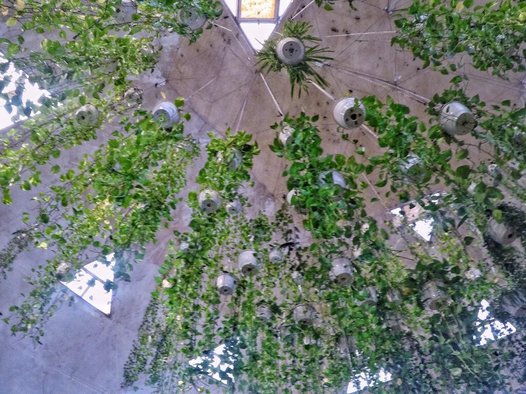 Butterfly Garden Leaves   Packs Light
