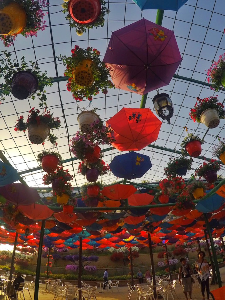 Umbrellas Miracle Gardens | Packs Light