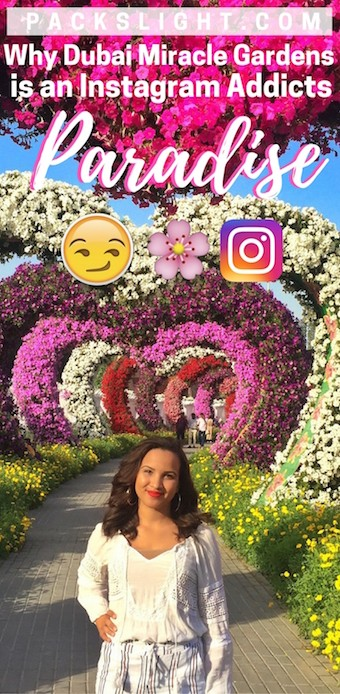 Dubai Miracle Gardens has to be one of the most Instagram-worthy place in all of Dubai! 42 million flowers make it colorful and one-of-a-kind!