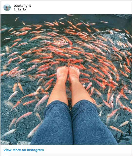 Fish pedicure in Sri Lanka