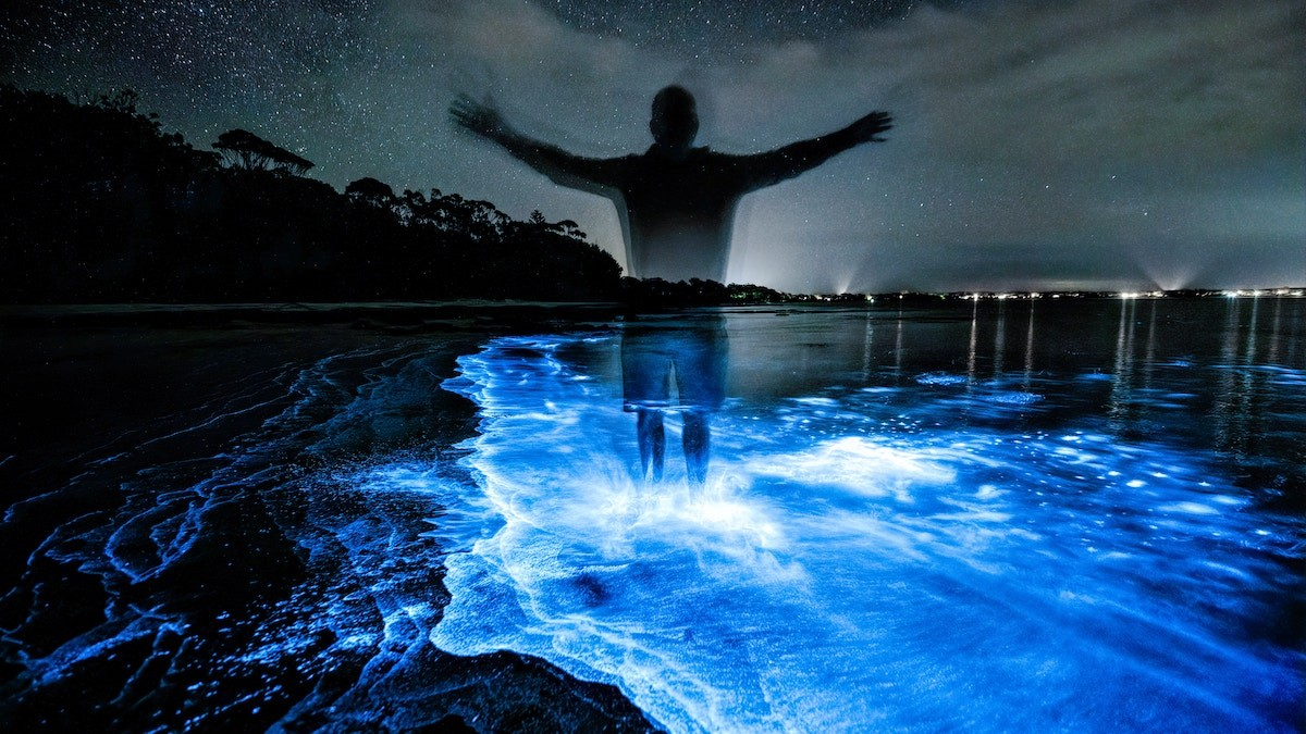 U.S. Virgin Is;ands Bioluminescent Bay