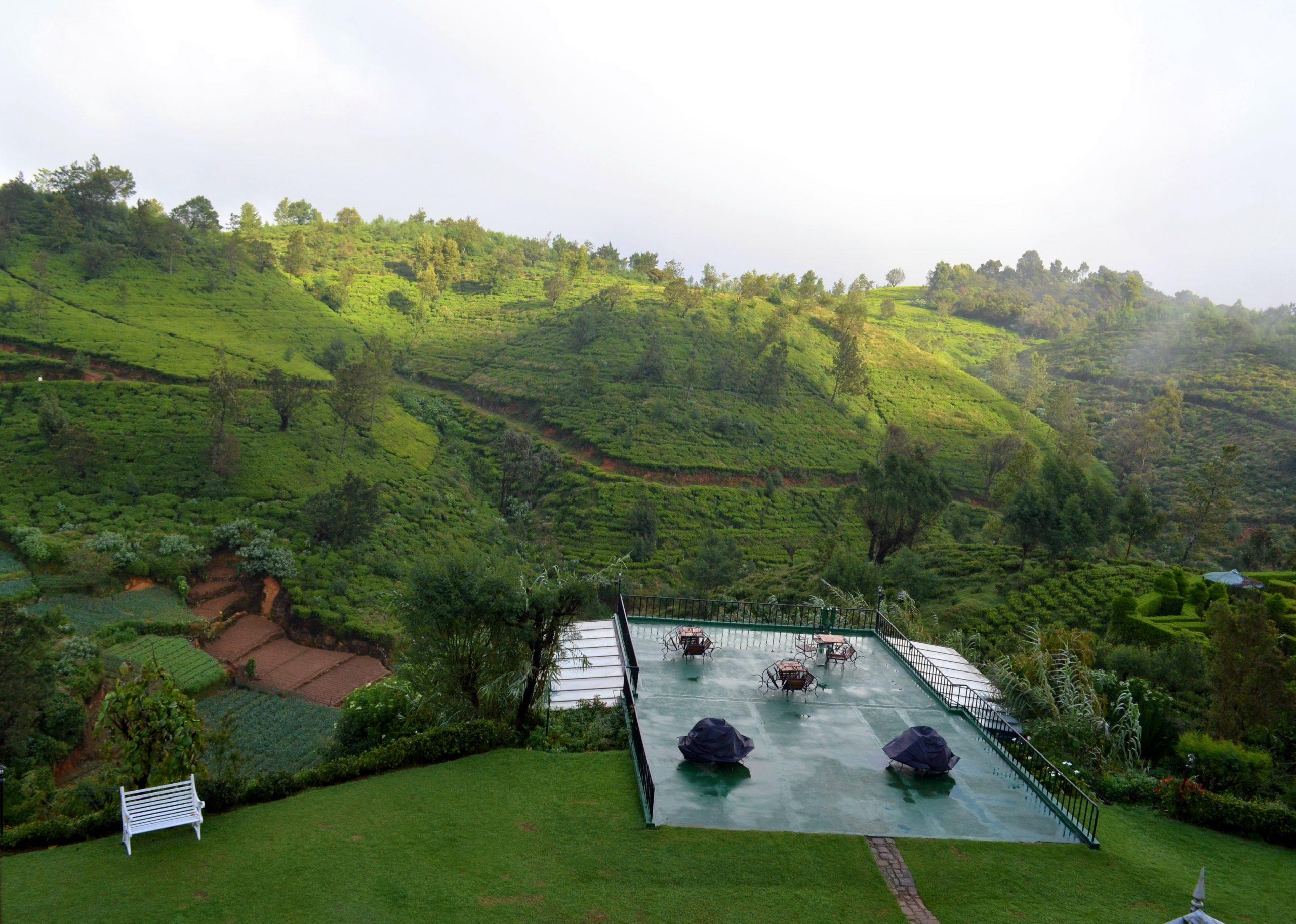 Tea gardens of Nuwara Eliya